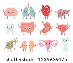 healthy biological organ.... | Shutterstock .eps vector #1239636475