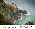 manarola  cinque terre  five... | Shutterstock . vector #1239641698