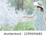 girl with her back and  straw... | Shutterstock . vector #1239654682