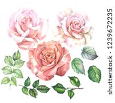 Set Of Watercolor Roses And...