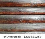 natural brown wood. door  wall ... | Shutterstock . vector #1239681268