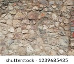 natural wall with big and small ... | Shutterstock . vector #1239685435