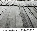 natural wood. door  wall ... | Shutterstock . vector #1239685795