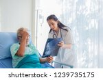 the doctor is diagnosing the... | Shutterstock . vector #1239735175