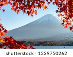landscape of view the mount...   Shutterstock . vector #1239750262