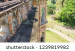 exterior of unfinished...   Shutterstock . vector #1239819982