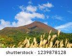 sightseeing spot  bandaisan... | Shutterstock . vector #1239878128