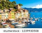 beautiful sea coast with... | Shutterstock . vector #1239930508