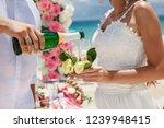 wedding glasses  beach wedding...   Shutterstock . vector #1239948415