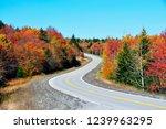 highland scenic highway ...   Shutterstock . vector #1239963295