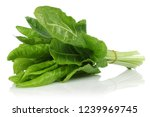 A bunch of fresh chard leaves...