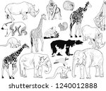 illustration with animals... | Shutterstock .eps vector #1240012888