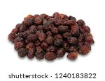 rosehip dry fruit isolated on a ... | Shutterstock . vector #1240183822