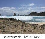 pointes des colibris  ... | Shutterstock . vector #1240226092