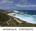 pointes des colibris  ... | Shutterstock . vector #1240226152