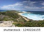 pointes des colibris  ... | Shutterstock . vector #1240226155
