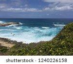 pointes des colibris  ... | Shutterstock . vector #1240226158