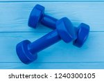 pair of dumbbells on color... | Shutterstock . vector #1240300105