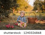a small smiling boy stands in... | Shutterstock . vector #1240326868