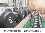 dumbbell the device in the... | Shutterstock . vector #1240402888