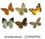 butterfly on white | Shutterstock . vector #124045942