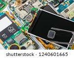 electronic chip in tweezers on... | Shutterstock . vector #1240601665