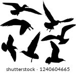 illustration with gull... | Shutterstock .eps vector #1240604665