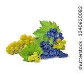 fresh  nutritious  tasty grapes.... | Shutterstock .eps vector #1240620082