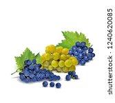 fresh  nutritious  tasty grapes.... | Shutterstock .eps vector #1240620085