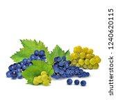 fresh  nutritious  tasty grapes.... | Shutterstock .eps vector #1240620115