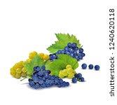 fresh  nutritious  tasty grapes.... | Shutterstock .eps vector #1240620118