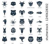 elements such as mink  colibri  ... | Shutterstock .eps vector #1240628302