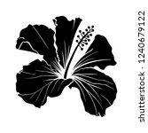 hawaiian hibiscus laser cut... | Shutterstock .eps vector #1240679122