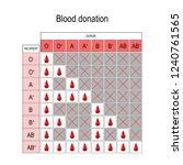 blood donation chart. recipient ... | Shutterstock .eps vector #1240761565