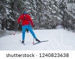 cross country skiing in winter | Shutterstock . vector #1240823638