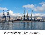novorossiysk russia   11.24... | Shutterstock . vector #1240830082