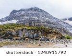 close views of the yangmaiyong... | Shutterstock . vector #1240915792
