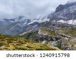 close views of the yangmaiyong... | Shutterstock . vector #1240915798