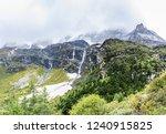 close views of the yangmaiyong... | Shutterstock . vector #1240915825