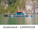 ha long bay  vietnam december... | Shutterstock . vector #1240943218