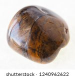 macro photography of natural... | Shutterstock . vector #1240962622