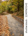 stone paved footpaths strewn...   Shutterstock . vector #1240965142