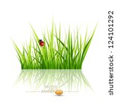 Vector Grass With Ladybird...