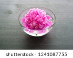 floating flower at aroma bowl... | Shutterstock . vector #1241087755