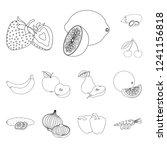 isolated object of vegetable... | Shutterstock .eps vector #1241156818