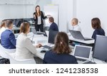 young elegant businesswoman... | Shutterstock . vector #1241238538