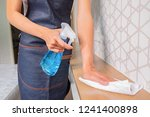 professional cleaning service... | Shutterstock . vector #1241400898