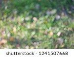 reclaimed background bokeh blur | Shutterstock . vector #1241507668