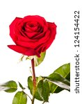 rose isolated on a white... | Shutterstock . vector #124154422