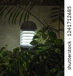 modern garden lighting...   Shutterstock . vector #1241712685